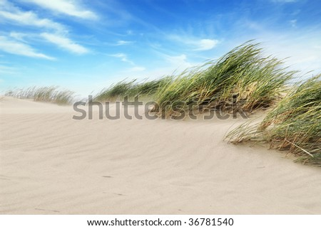 White clouds on blue sky over dunes - stock photo