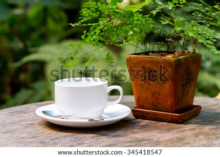 white coffee on the table with small tree in flowerpot