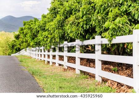 White concrete fence in fruit garden field - stock photo