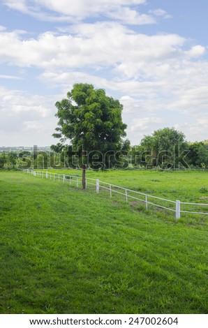 White concrete fence in horse farm field - stock photo