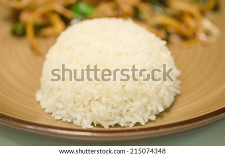 White cooked rice and Spicy Stir Fried Fish  dish - stock photo