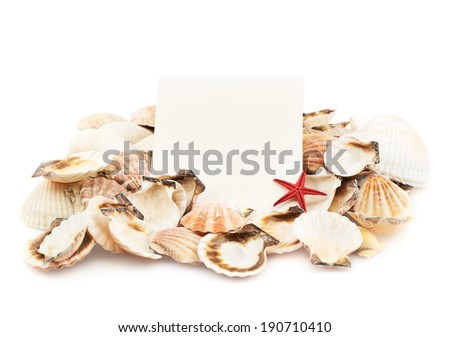 White copyspace paper card over the pile of seashells isolated over the white background - stock photo