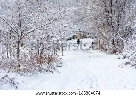 White covered path during winter. Beautiful face of snow. Person in the distance walking the dog. Ideal of a white Christmas - stock photo