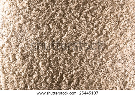 Shag Carpet Stock Images Royalty Free Images Amp Vectors