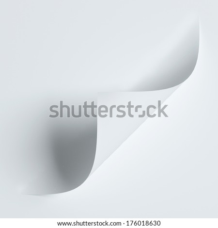 White curled paper corner isolated on white with soft shadows - stock photo