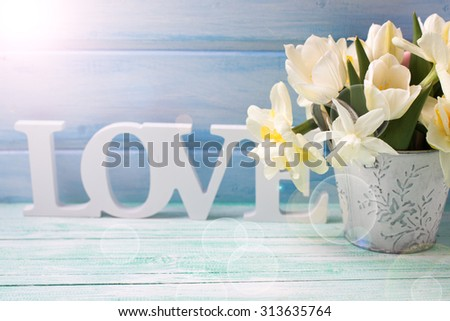White daffodils and tulips  flowers in bucket and word love in ray of light  on turquoise  painted wooden planks against blue wall. Selective focus. Place for text.  - stock photo