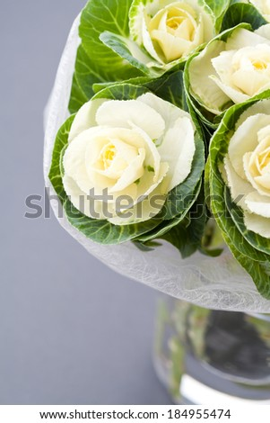 White decorative cabbage flowers in vase on grey background