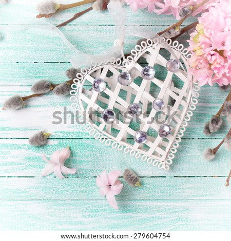 White decorative heart with hyacinths, willow flowers in ray of light on turquoise painted wooden planks. Selective focus. Square image. - stock photo