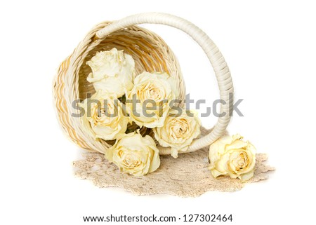 White dried roses in basket with knitted doily isolated on white background. - stock photo