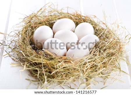 white eggs in nest