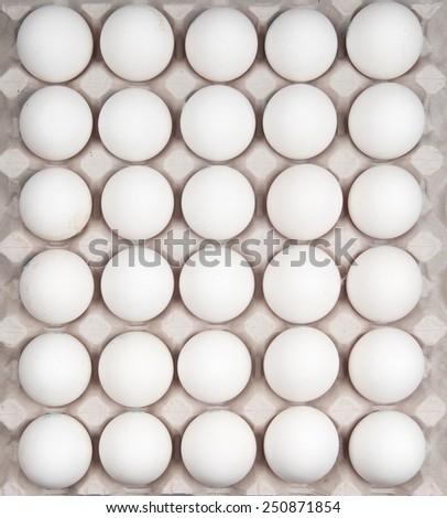 white eggs isolated on white - stock photo