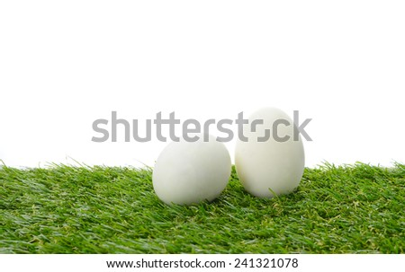 White eggs on field isolate on white