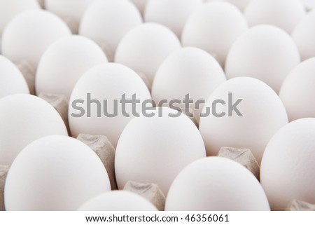white eggs row