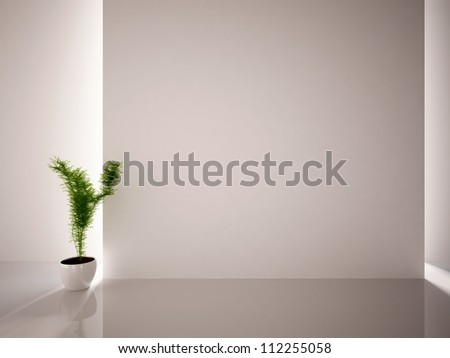 white empty interior with a green plant - stock photo