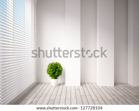 white empty interior with a plant - stock photo