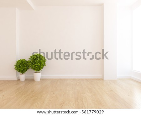 White Empty Room With Plant Living Interior Scandinavian Design 3d Illustration