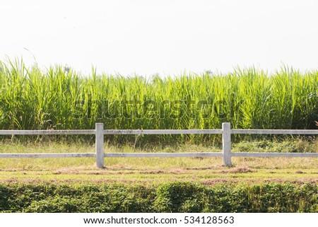 Modren Farm Fence Throughout Design Decorating
