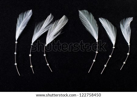 white feathers on black velvet - stock photo