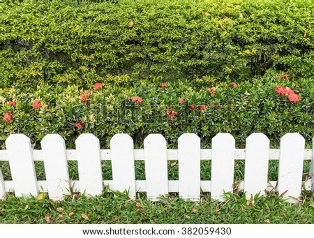 white fence and red flower