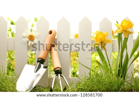 White fence with garden tools,green grass and daffodil flowers. - stock photo