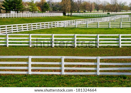 White Fences And Green Grass During Springtime In Horse Country, Lexington, Kentucky, USA - stock photo