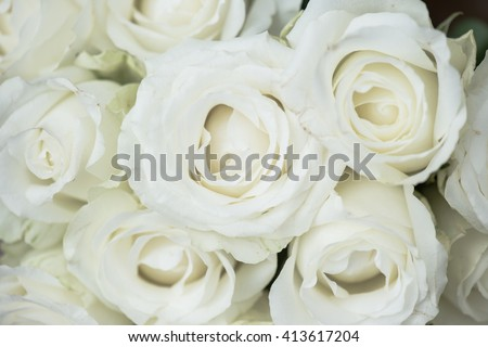 White flower decoration. Wedding floral decor.  - stock photo