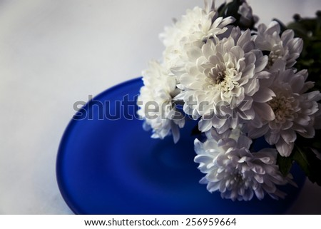 White Flower on white background with heart from white pearl beads, Valentine background, spring flower, White dahlia with violet heart close-up , floral background. - stock photo