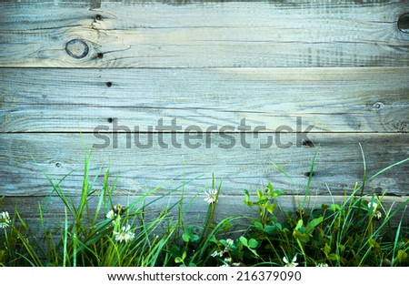 white flowers and grass and with the old blue wooden fence - stock photo