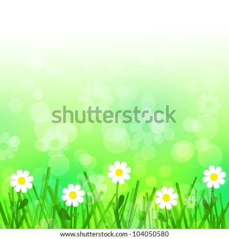 White flowers and green grass background