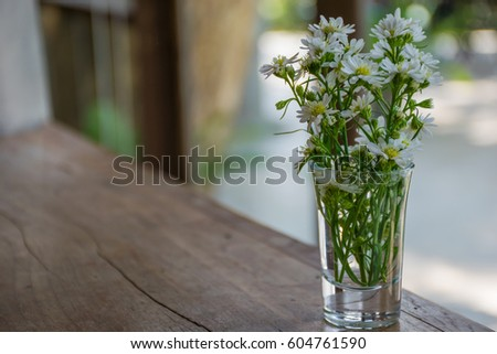 White Flowers Glass Vase Vintage Tone Stock Photo Royalty Free