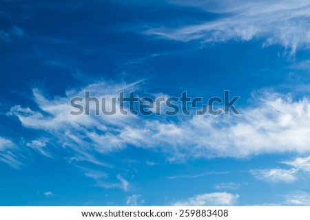 white fluffy clouds in the sky