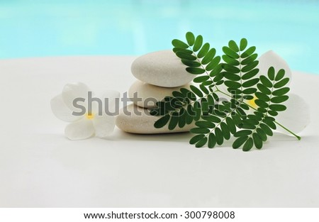 white frangipani flower, pebbles, tropical plant, white background turquoise water, soft airy focus,tranquil vacation scene - stock photo