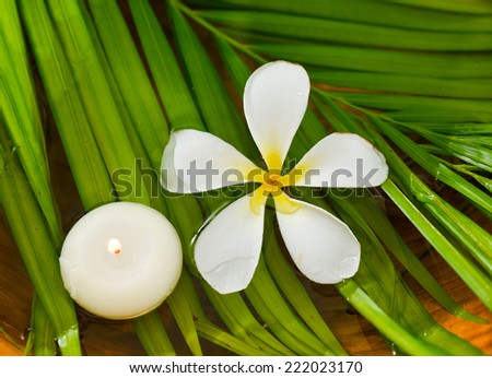 White frangipani with candle and wet palm leaf in wooden bowl - stock photo