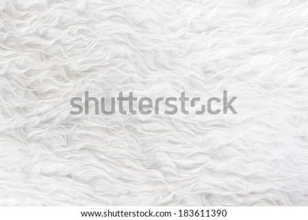 white fur texture - stock photo