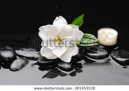 white gardenia and green leaf with therapy stones