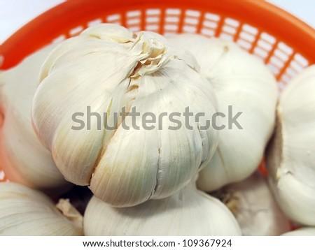 white garlic. - stock photo