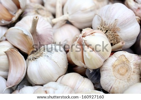 White garlic background texture