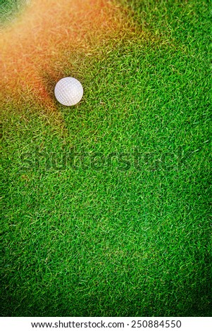 White golf ball on green grass background - stock photo