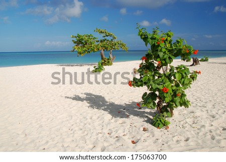 White Guardalavaca beach in Cuba