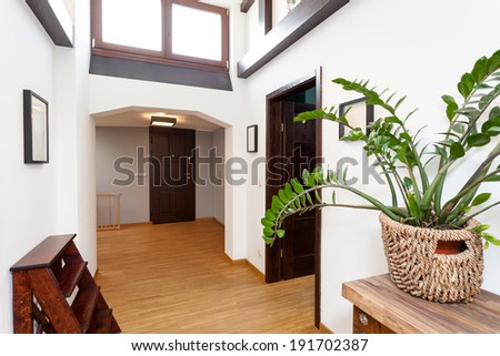 White hall in a modern house, horizontal
