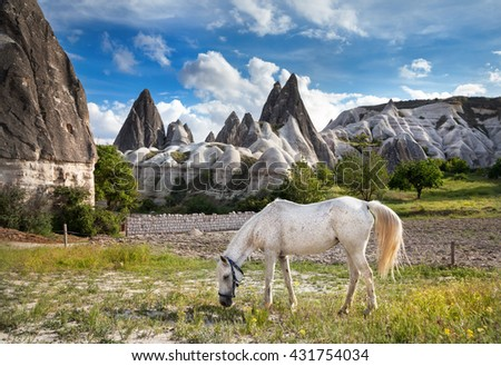 White horse feeding grass at tufa geological formation called fairy chimneys in Cappadocia, Turkey - stock photo
