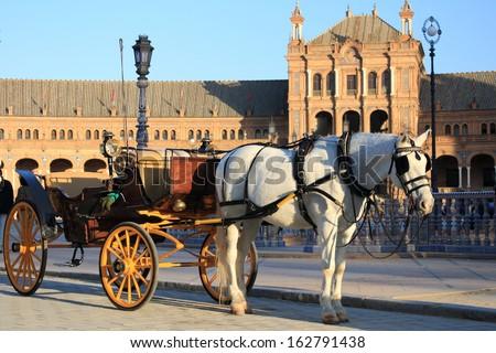 white horse with barouche at Plaza de Espana in Seville - stock photo