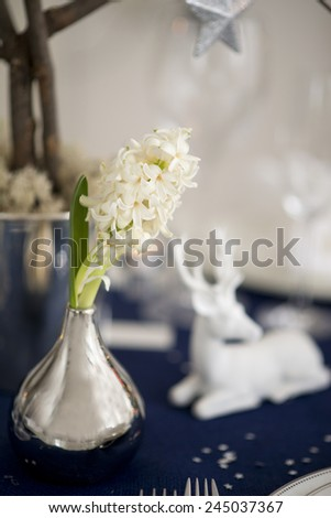 white hyacinths on the christmas background