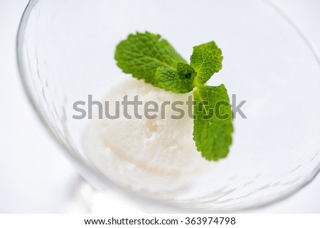 white ice cream with mint leaves in a glass