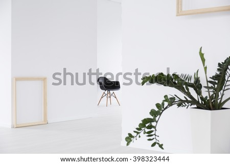 White interior with plant in decorative pot, frames hanging on walls, black chair in the background - stock photo
