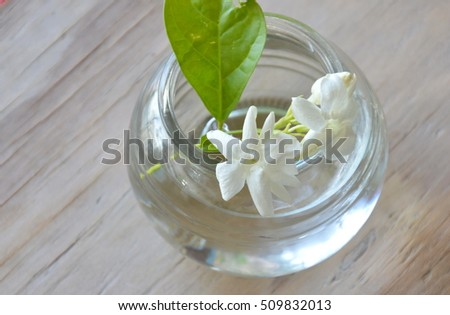 white jasmine on water in glass bottle