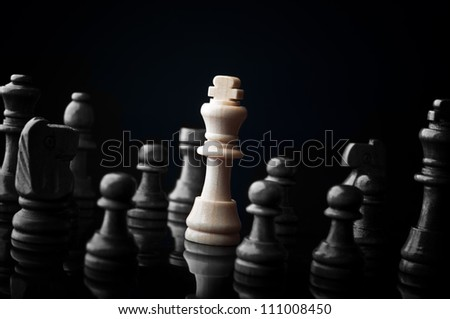 White king and the black pieces on black background - stock photo