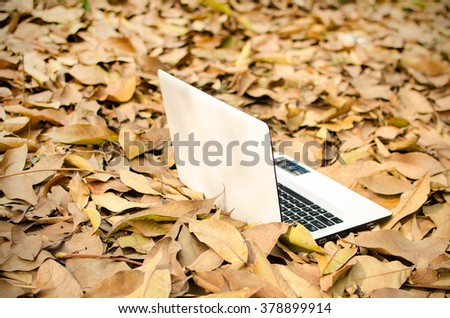 White Laptop lying on dry leaves outdoor garden in sunny day of a winter morning - stock photo