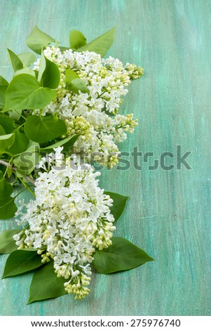 white lilac, lilac purple, white sheet of paper with hearts punching, punching with flowers on turquoise background, on a brown background, - stock photo