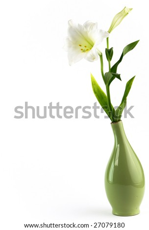 White lily in green vase over white background